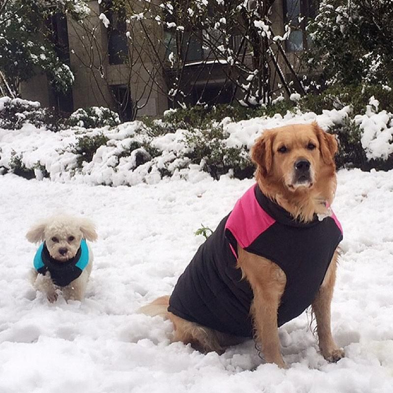 Dog Apparel Warm Down Pet Winter Clothes Jacket Thickening Cotton Puppies Body Waterproof Coat Zippered Big Dogs Parkas