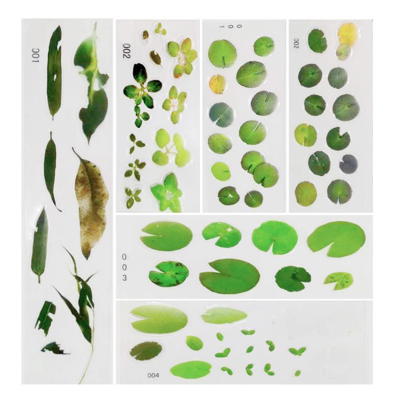 Envoltura de regalo DIY Hecho a mano 3D Crystal Epoxy Resin Pintura Material Pegatinas Flor Etiqueta de decoración de la planta transparente # 45
