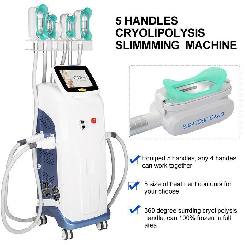 2021 Fabrika Fiyat Cryolipolysis Selülit Sistemi Yağ Donduru Cryolipo Lizis Makinesi Almanya 5 Kolları ile Kriyoterapi Cihazı Kolu
