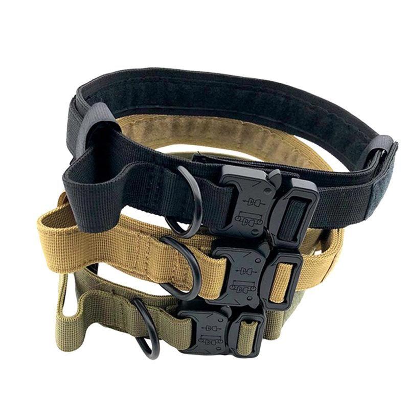 Colares de cão coleiras de colaLeash Nylon 2021 verão ajustável personalizado com tag de nome de filhote de cachorro tag livre gravado acessórios duráveis gravados