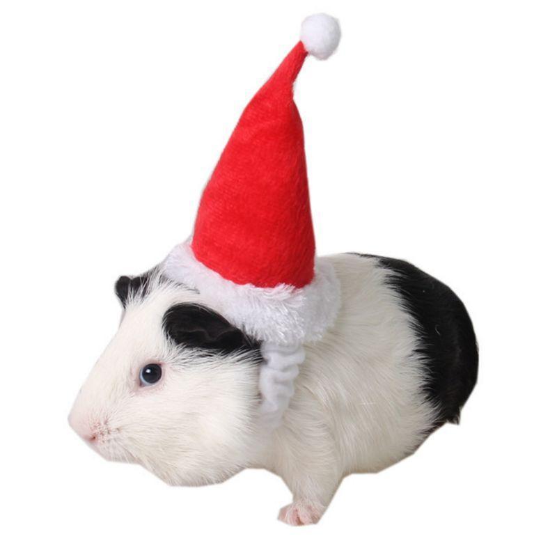 Köpek Giyim Küçük Hayvanlar Pet Noel Baba Şapka Hamster Ginya Domuz Sıçan Festivali Kostüm Noel Şapkası Band Ürünleri