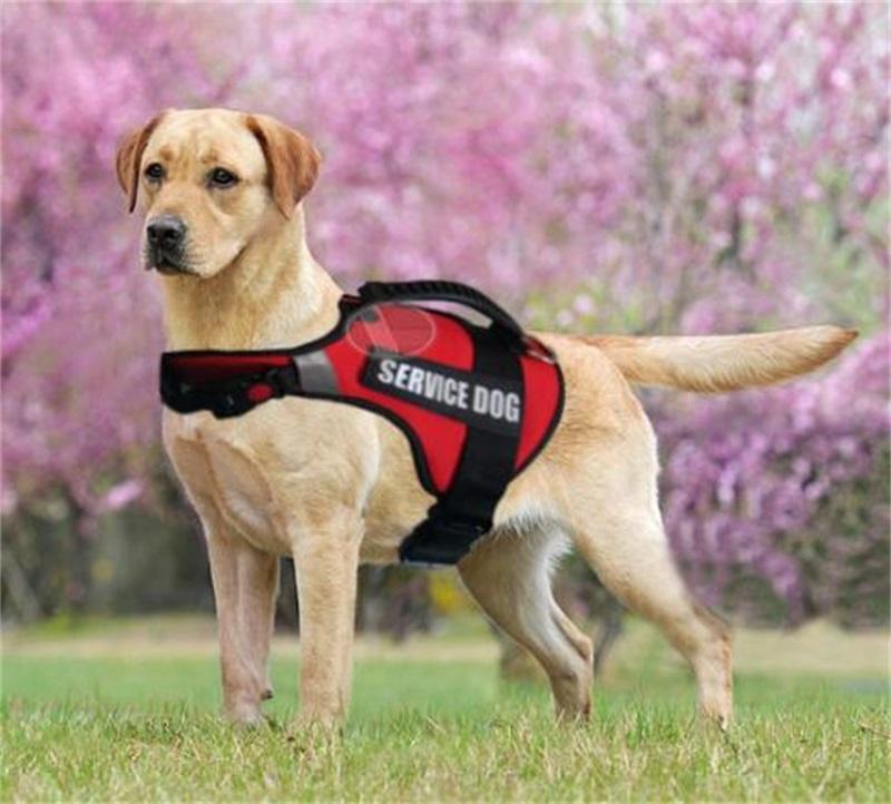 Yansıtıcı Tuval Büyük Köpek Koşum Servis Köpek Yelek Nefes Ayarlanabilir Kolu Kontrol Orta Büyük Köpekler için Yürüyüşü 1438 V2