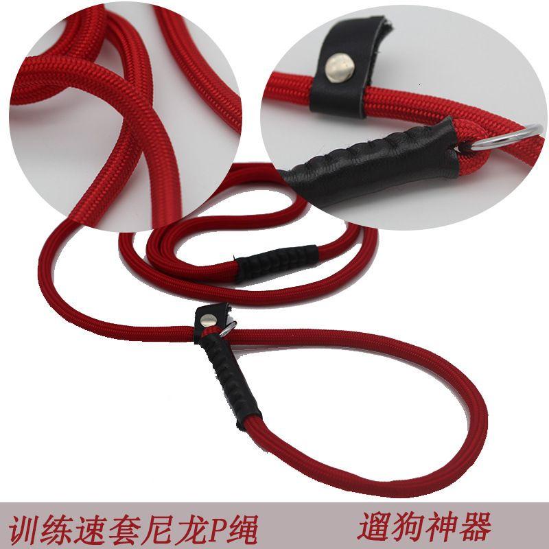 Nylon Aibao Prodotti per animali domestici Batch Traction Corda Formazione Dog P-Catena professionale Comizione professionale