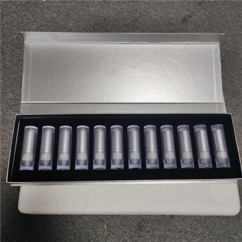 Trucco delle labbra 12pcs Set Rouge opaco rossetto Lip Stick 12 colori Tubo trasparente Scatola argento Lipkit