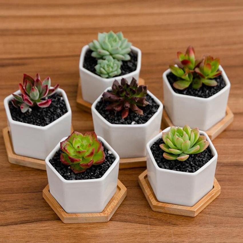Potenciômetros de cerâmica dos vasos mini vasos brancos da porcelana de vasos suculentos Plantadores interiores do berçário do jardim do jardim com chassis CYZ3125