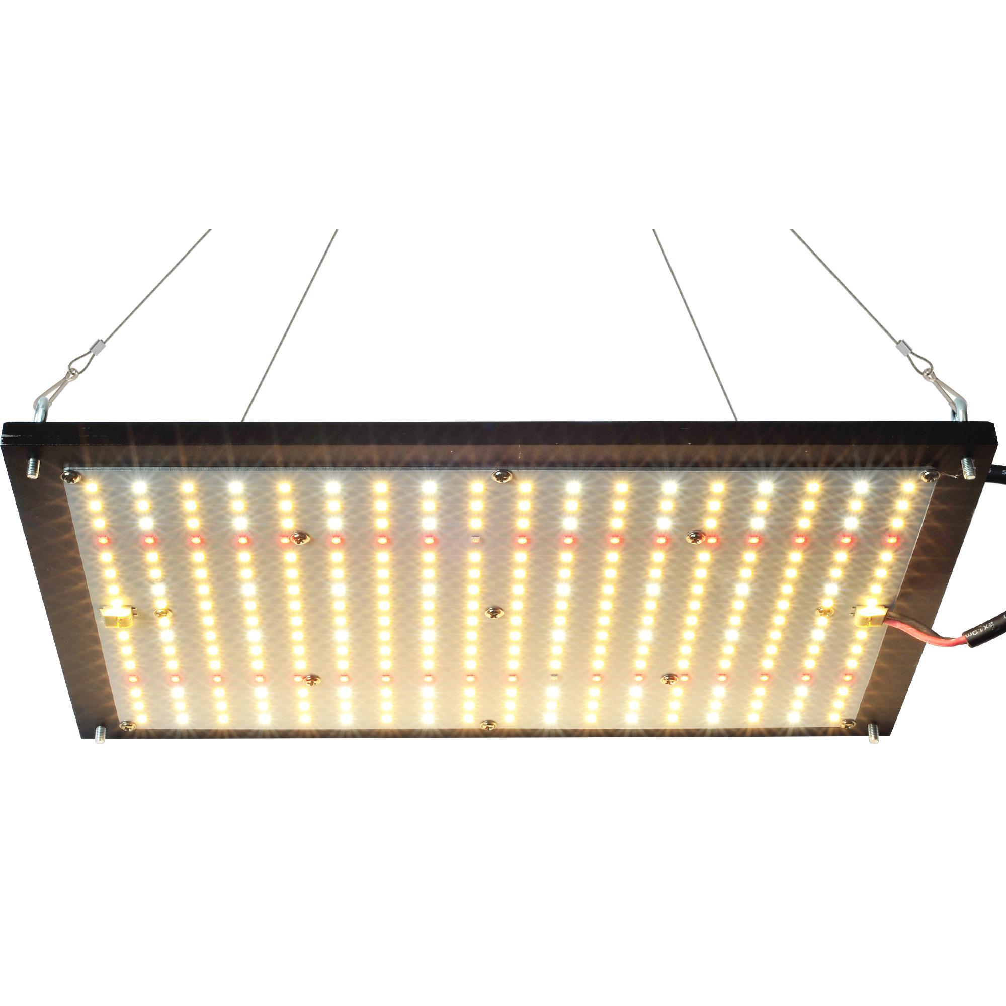 1000W LED تنمو ضوء للنباتات الداخلية الطيف الكامل مع مصابيح الصمامات سامسونج ومصدق 1000 واط مصباح المصابيح النمو