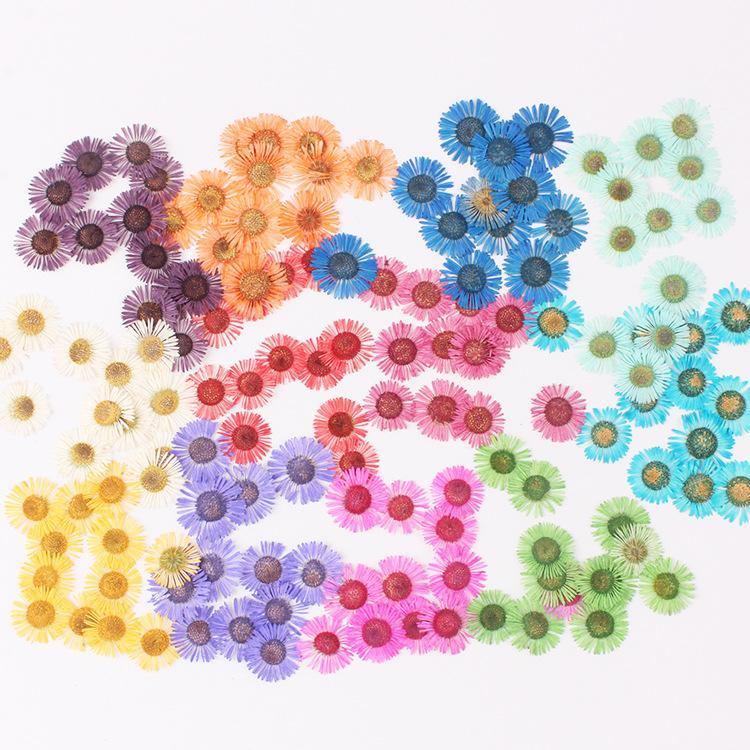 120 unids prensado conyza conyza canadensis relleno de flores para la resina epoxi joyería de la resina que hace la postal del marco del teléfono Case Artesanía DIY