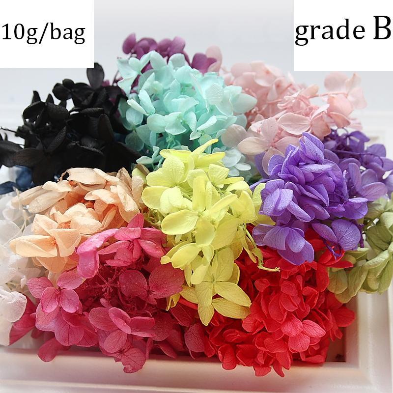10g Preserved Hydrangea Flowers Dry Natural Fresh Forever Hydrangea Eternelle Rose DIY Immortal Flower Material Gift Grade B