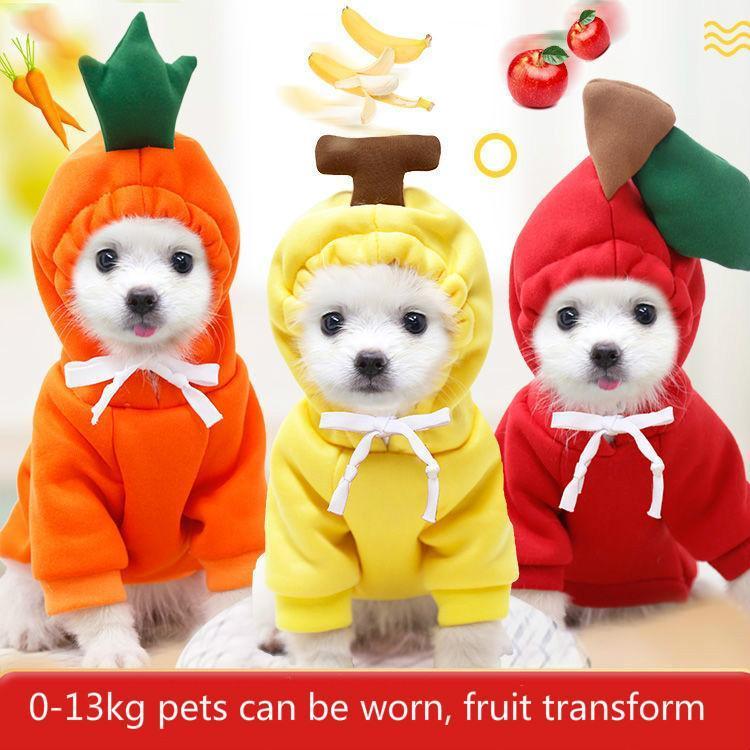 Hundebekleidung Haustierkleidung, Stil für Herbst- und Winter-Transformation, Teddy-Katze kleine mittelgroße Fleece-Pullover-Cartoon-Kleidung
