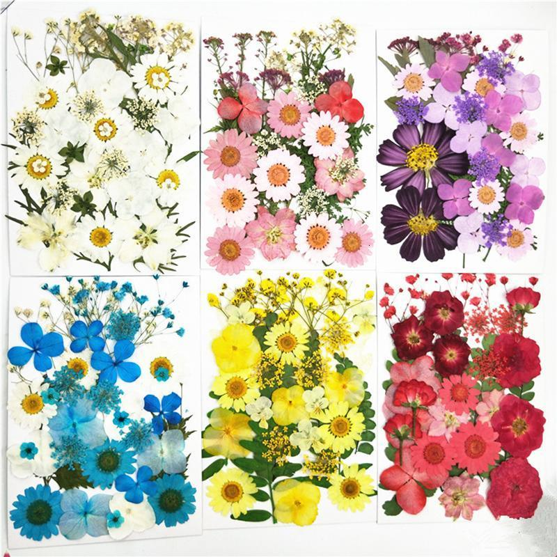 Small Dried Flowers Pressed Flowers DIY Preserved Artificial Flower Decoration Home Mini Bloemen Decorative Dried Flower