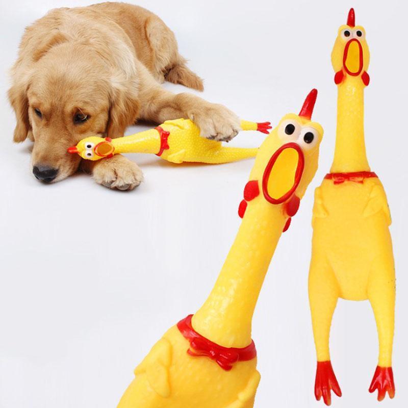 يصرخ الدجاج ضغط الصوت لعبة الحيوانات الأليفة الكلب اللعب المنتج تصريف أداة الضغط صرير تنفيس الدجاج تململ اللعب