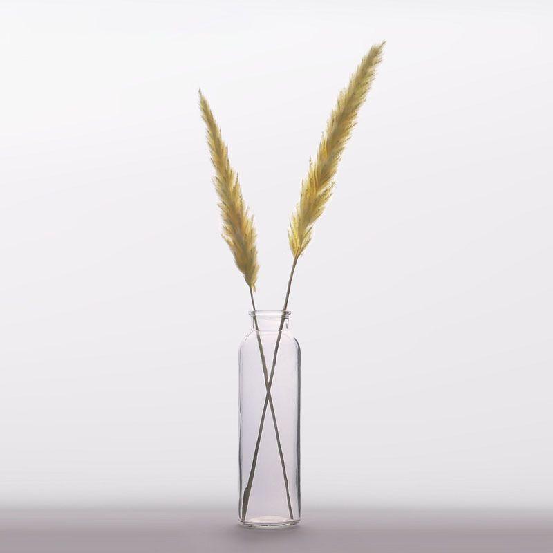 Natürliche Binse Getrocknete Blumen Kleine Pampas Gras Phragmiten Künstliche Pflanzen Hochzeit Blume Bündel Home Decor Gefälschte Blumen 1254 V2