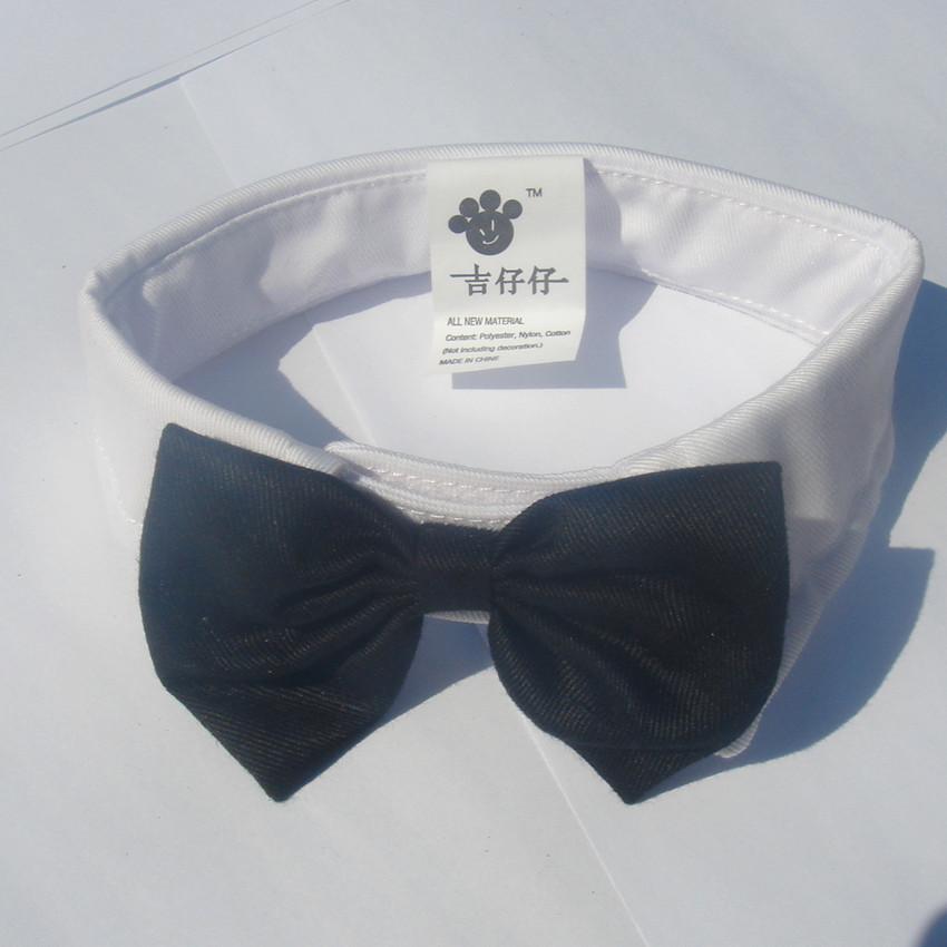 Rings on Black DogCat Bow Tie NEW!