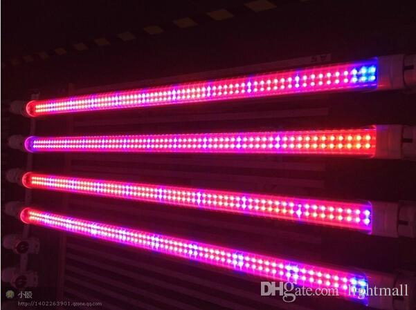 T5 Tube Grow Lamp 18w 12 7w 120cm T8 Led Plant Grow Light Red And Blue Pse Ce T Tick Rohs Ul 5 Years Warranty Cheap Grow Lights Led Grow Lights Review