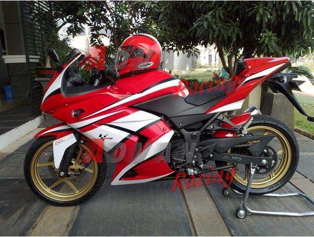 Injection Molding Painted Red White Custom Fairing Kawasaki Kawasaki Ninja 250r Ex250 2008 2012 33 Body Parts Of Motorcycle Cafe Fairings For