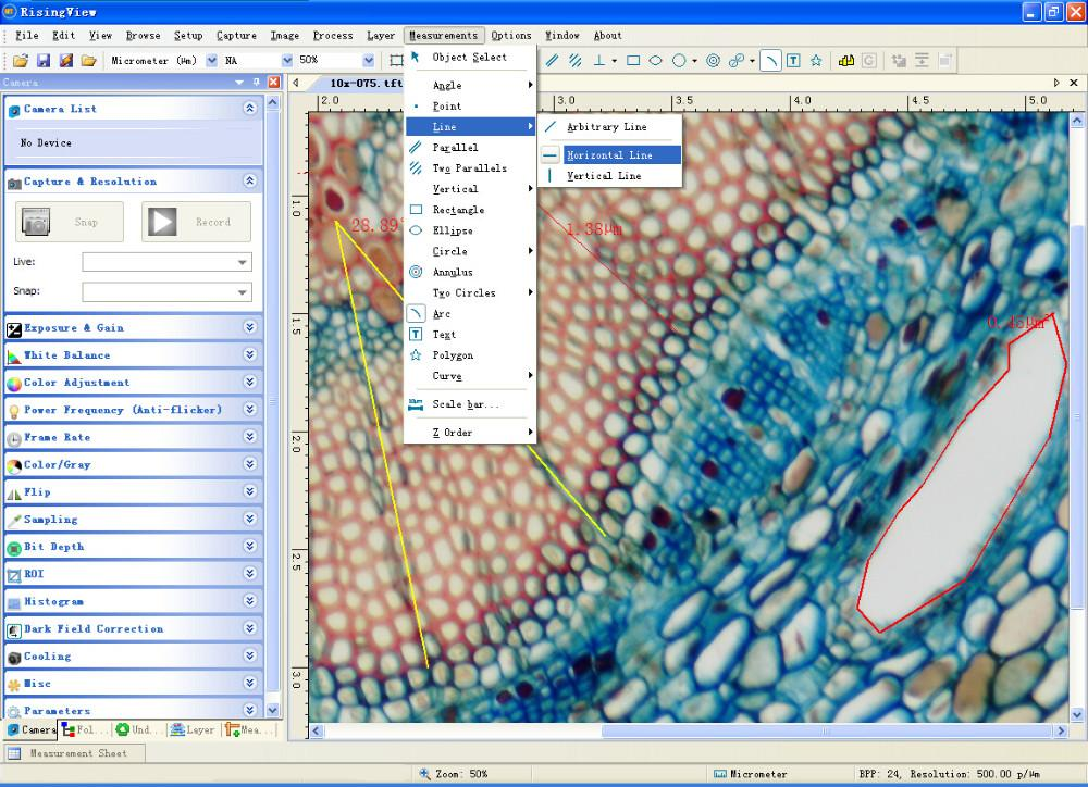software picture