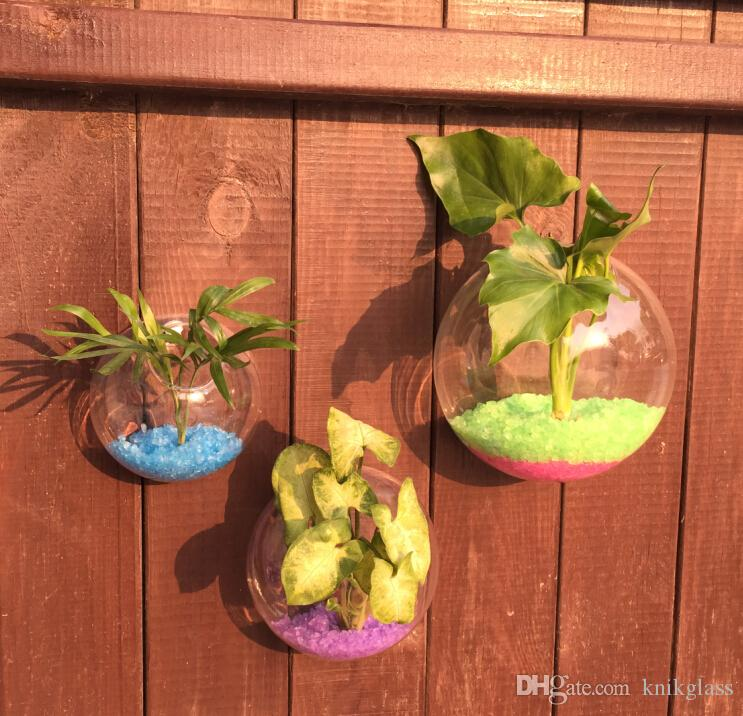 5/6 Glass Wall Hanging Plant Orb/Terrarium With Plant And Live