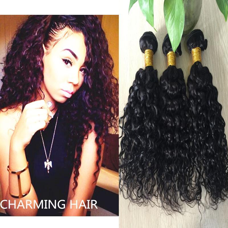 Brazilian Water Wave Brazilian Virgin Hair Ocean Wave 3pcs Lot Hair Brazillian Curly Wet and Wavy Human Hair Bundles 2016 8A
