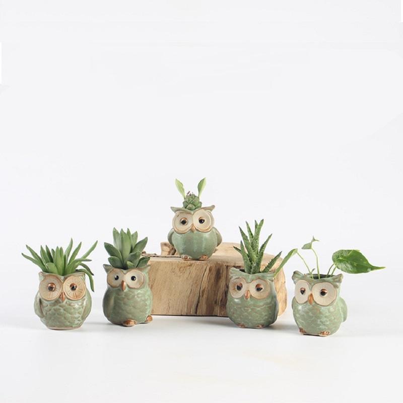 5 teile / los Kreative Keramik Eule Form Blumentöpfe für Fleischige Sukkulente Tier Stil Pflanzer Hausgarten Büro Dekoration