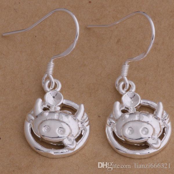 Fashion (Jewelry Manufacturer) 40 Stück viel Tau Ohrringe 925 Sterling Silber Schmuck Fabrik Preis Mode Shine Ohrringe