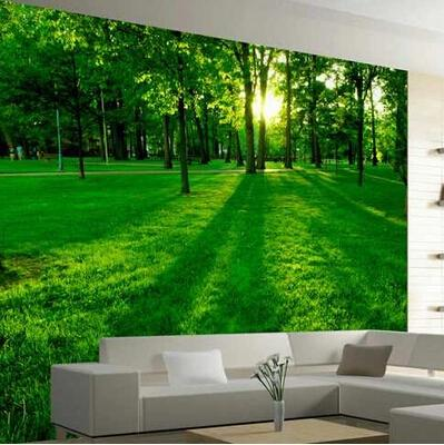 Can Customized Design Large 3d Mural Art Wallpaper Home Decor Personality Visual Natural Scenery Non