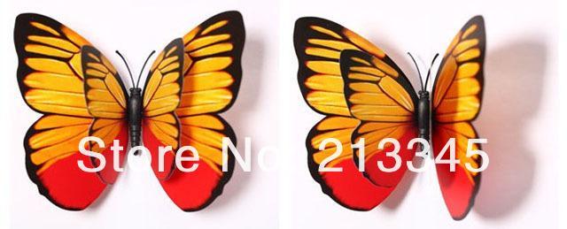 12cm-12pc DG (3).jpg