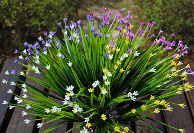 Plásticos Greenery Bunch 10 Unids / lote 32 cm Artificial Fake Plants Green Pequeño Primrose Grass para Market Project Home Xmas Party Decoration