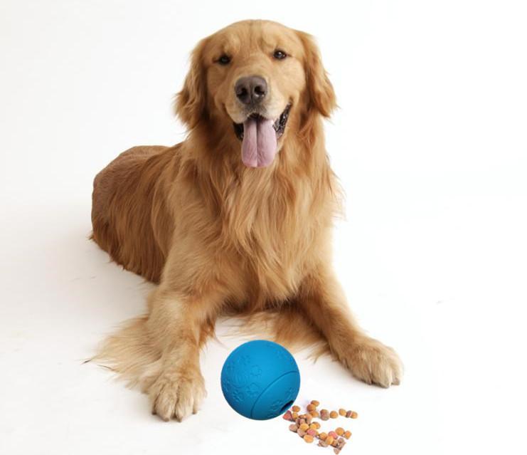 البلاستيك الكلب اللوازم المعمرة عالية الجودة المطاط الغذاء موزع كلب مضغ لعبة