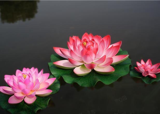 17 سنتيمتر القطر جميل الاصطناعي لوتس زهرة النباتات المائية حوض للأسماك ديكور لوازم الحرفية ل حفل زفاف المنزل الديكور