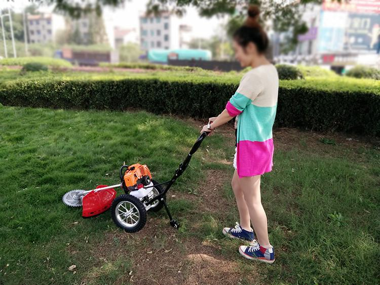2021 New Arrival Household Grass Cutter Gas Grass Trimmer