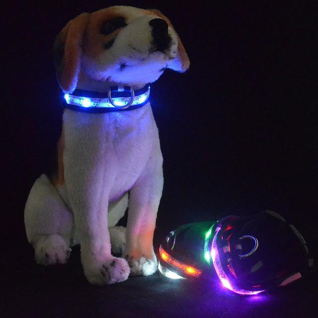 LED Beer Bear luminous pet dog collar, nylon webbing fiber optic flashing dog necklace S/M/L/XL
