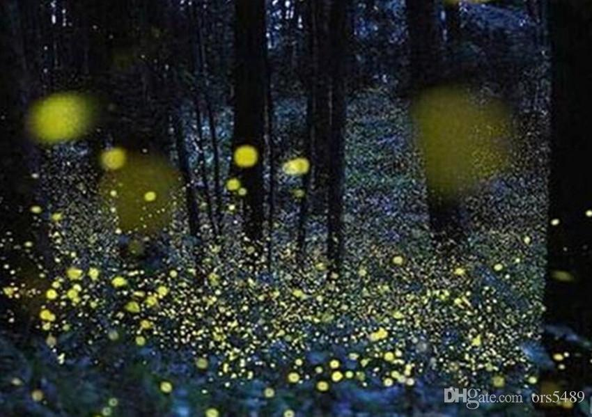 Firefly magic solar battery operated firefly lights outdoor led firefly magic solar battery operated firefly lights outdoor led firefly light romantic outdoor activities customized models outside string lights hanging workwithnaturefo