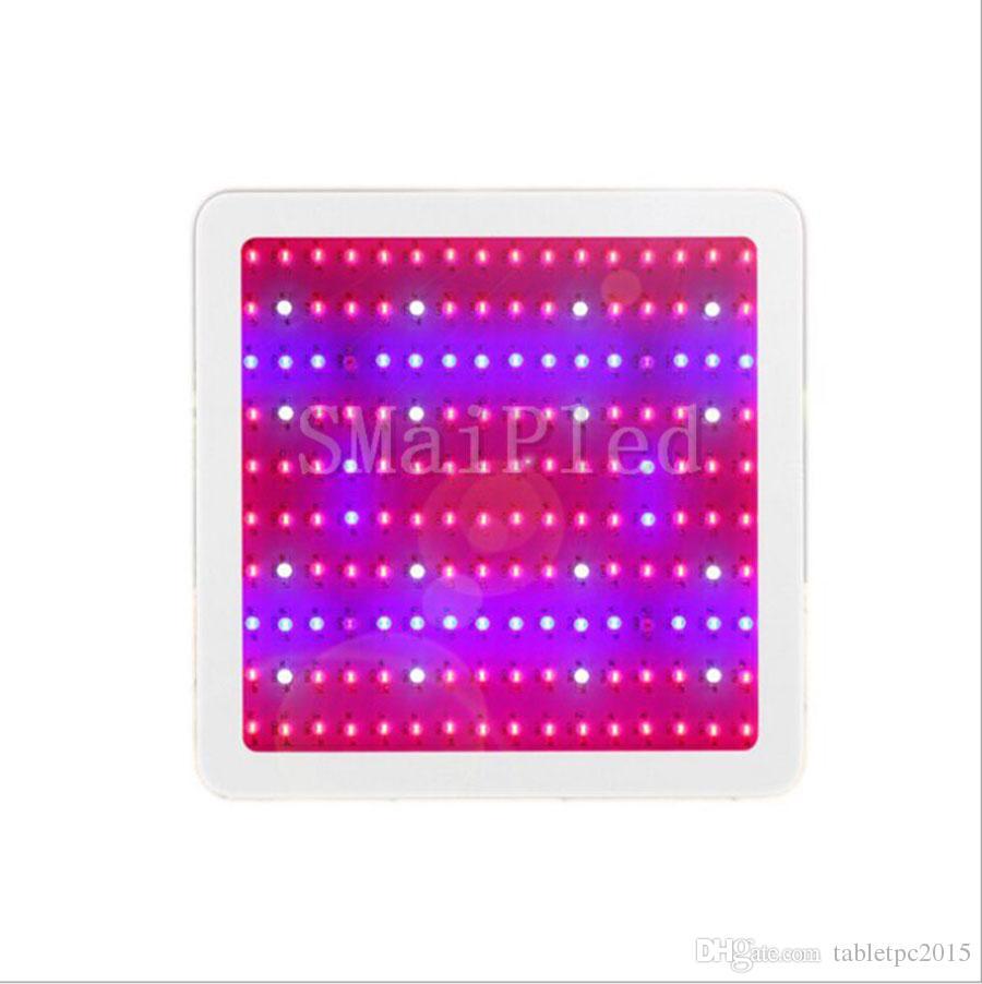 Full Spectrum 1600W 1800W 2000W luce di sviluppare condotto per la scatola Grow Tenda idroponica serra LED Lamp adatto a tutte le fasi di crescita delle piante