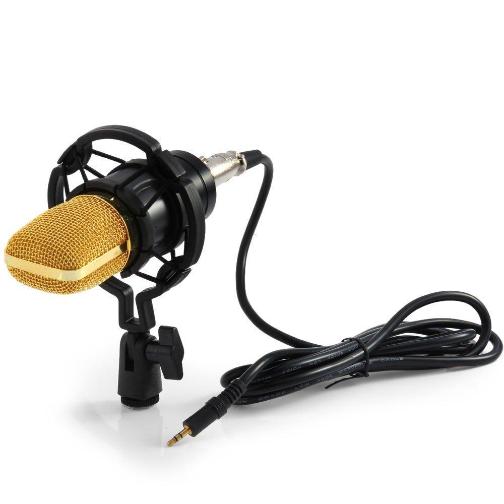 Microfono nero del modello unidirezionale 3.5mm del microfono 3.5mm del condensatore BM-700 con il supporto di scossa per le radio Braodcas