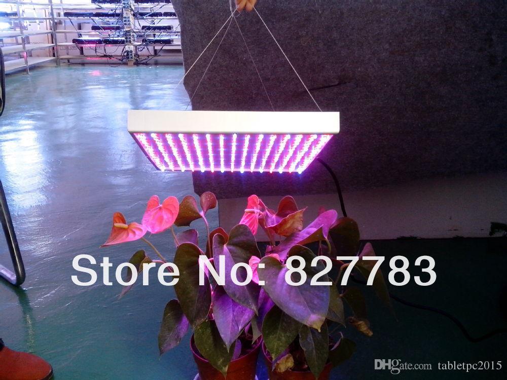 جودة عالية 15W الطيف الكامل الصمام تنمو ضوء AC85 ~ 265V المائية تنمو النبات الضوء الأحمر / الأزرق 8/1 حرية الملاحة