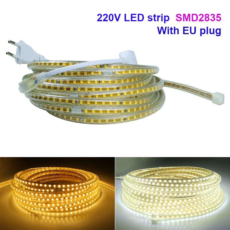 SMD2835 led strip with EU Power plug AC 220V 120 led/M superbright waterproof ip 67 flexible led bar indoor / outdoor decoration