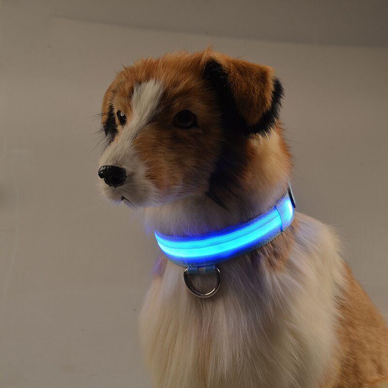 en Naranja de la Marca PRECORN gatas Mascotas Tama/ño S-L se Puede Cortar Individualmente a 18-65 cm Recargable v/ía USB LED USB Silic/ón Collar Luminoso para Perros
