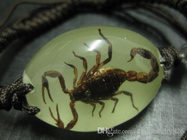 freies Verschiffen yqtdmy 12 PC handgemachte hohe Transparenz das Insektarmband des Skorpions leuchtende