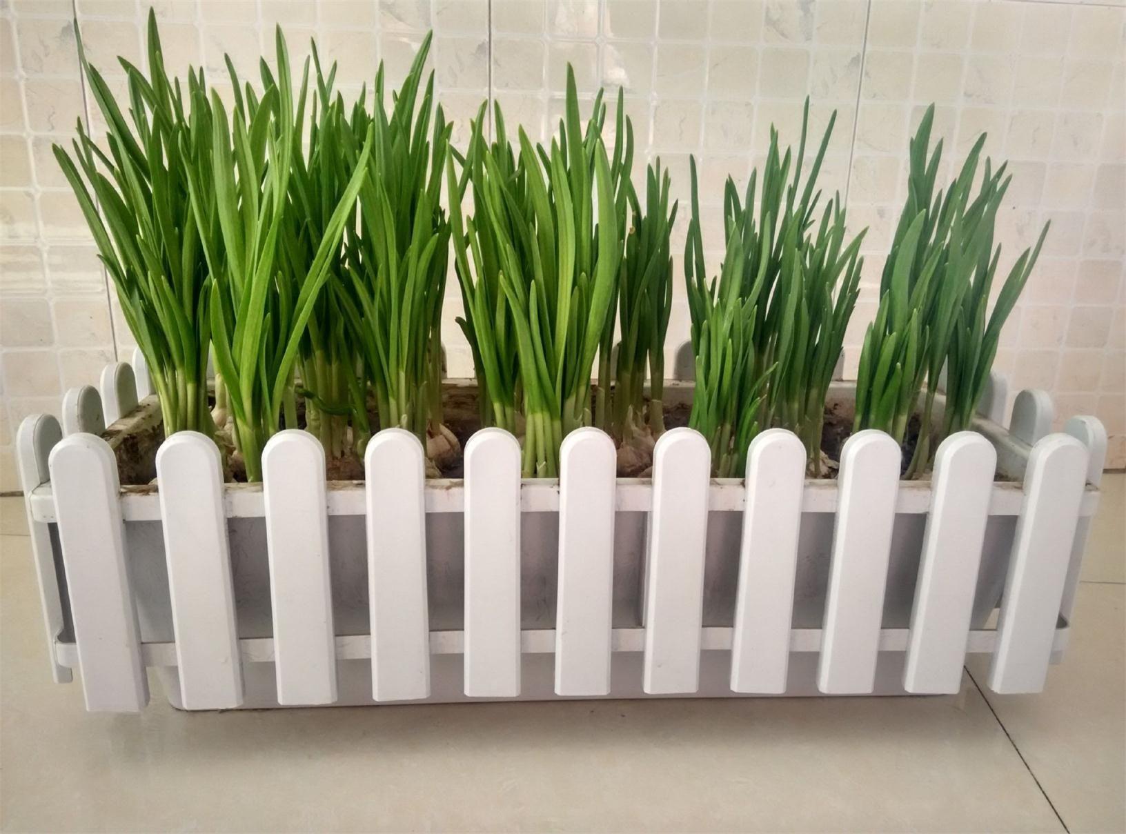 Grosshandel Balkon Garten Blumentopfe Rechteckige Pflanzer Zaun