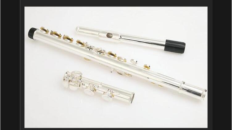 FL-371 16 Hole Closed C Key Silver Plating Cupronickel Flute / Preliminary Examinations Play Metal C flute
