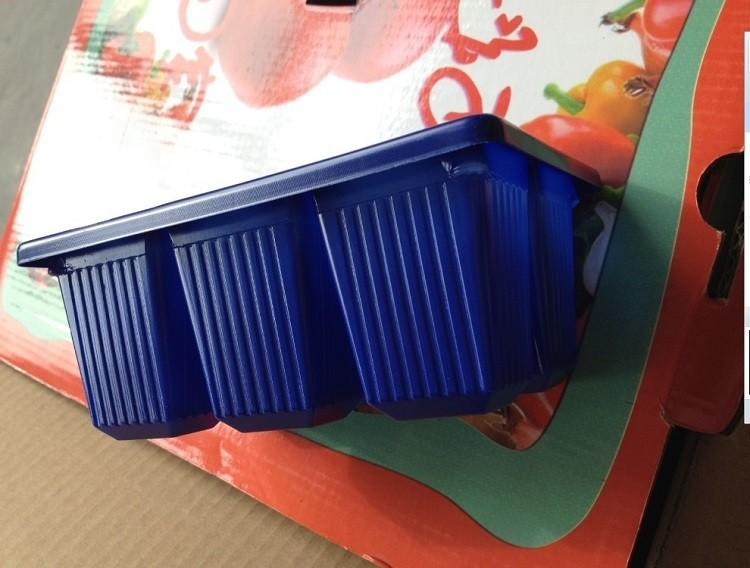 5pcs Plastic Nursery Pots 6 Holes Plant Seedling Tray Sprout Plate Garden Tray Tool Box Blue Color Wholesale (4)