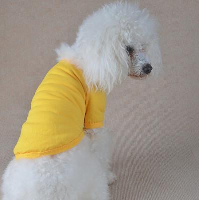 Bonbons couleur polo chien vêtements, chien polo shirt, vêtements de chien de haute qualité produit pour chien