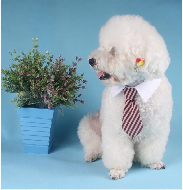 صديقة للبيئة كلب مخطط التعادل طوق القط القوس لطيف الكلب ربطة العنق الزفاف قابل للتعديل جرو الأحمر / الأزرق / كاكي