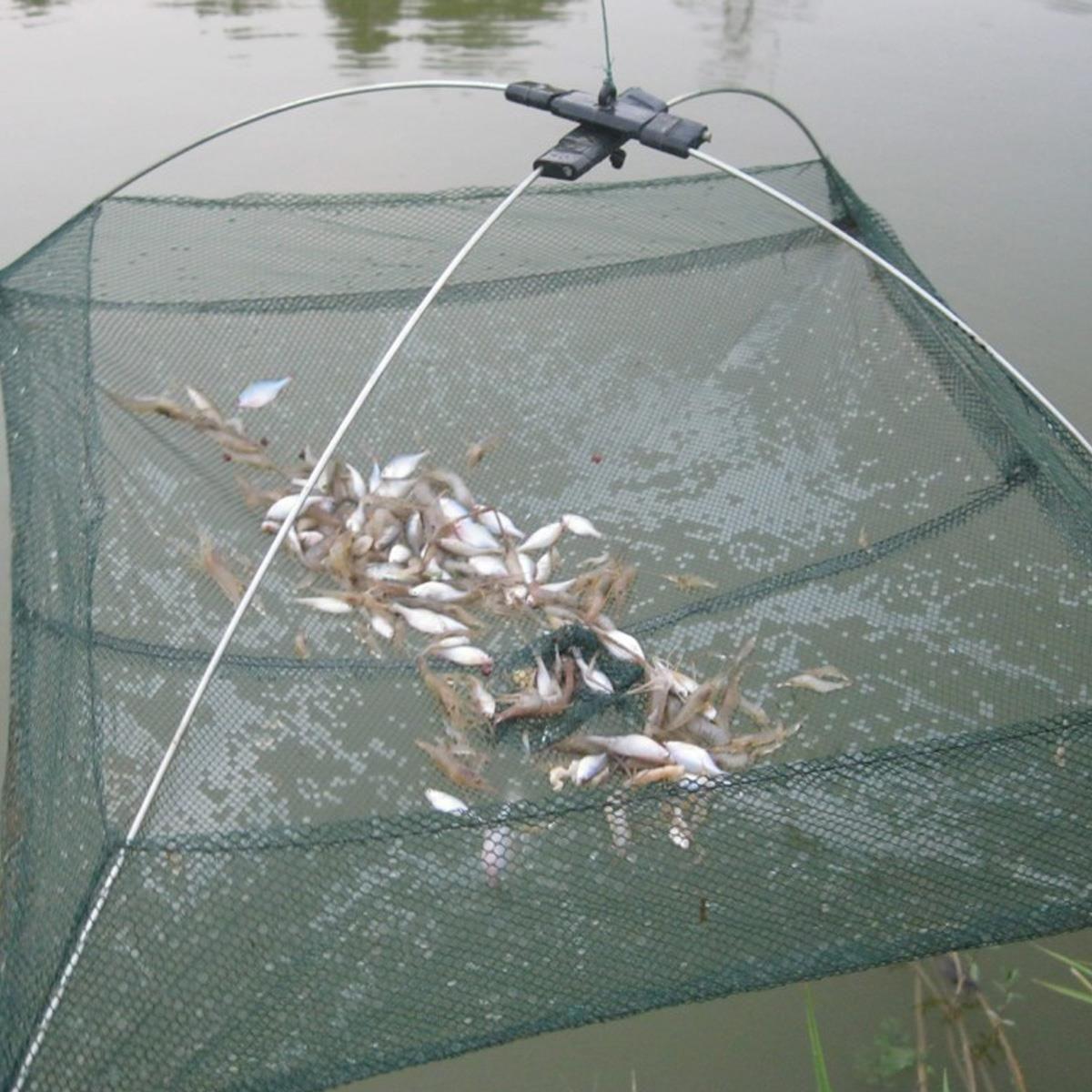 Size 60x60cm Foldable Crab Fish Crawdad Shrimp Minnow Fishing Tackle ...