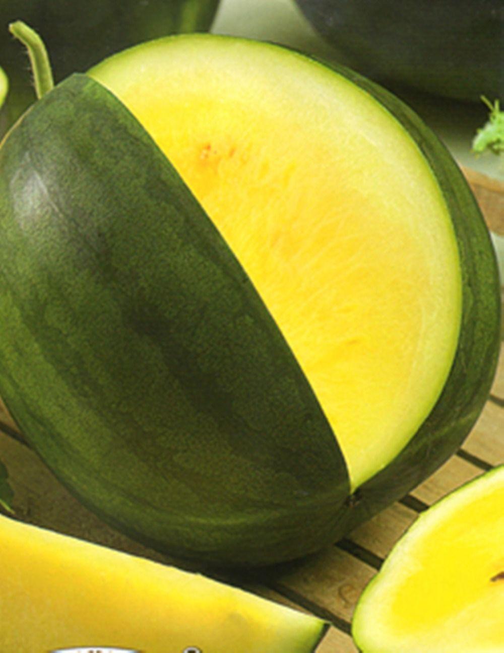 Seltene gelbe Wassermelone Samen Yanusyk Organic Russisch Erbstück Wassermelone Samen Garten Dekoration Pflanze 20 stücke F74