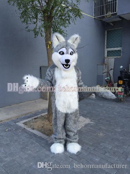 Wolf Kostüm freies Verschiffen, netten Qualitätsplüsch grau heiser Maskottchen erwachsenen Art Maskottchen Rabatt zu verkaufen.