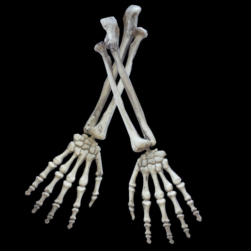 G4e Halloween Skeleton Escape 2020 2020 Cartoon Plastic Skeleton Arms Witch Hands Haunted House