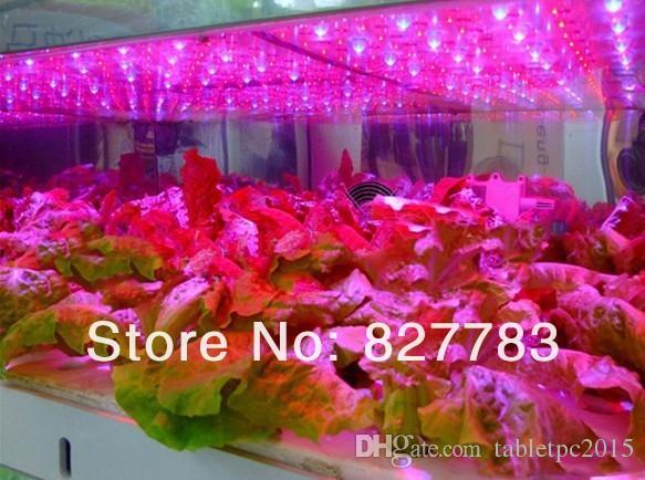 15 w led ışık büyümek Yüksek Kalite 225 LED 110-240 V Tam Spektrum Topraksız Büyümek Işık Bitki Büyümek Işık KırmızıMavi
