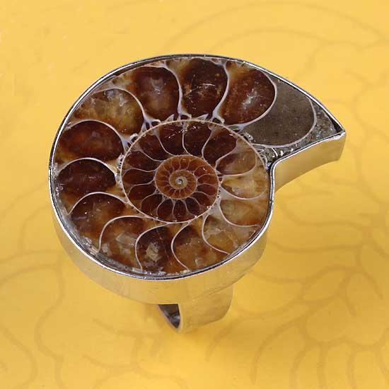 Anelli a vite Natural Screw il Fossil Silver Plated Natural Stone Anello regolabile Accessori Fashion Jewelry Reiki Amulet