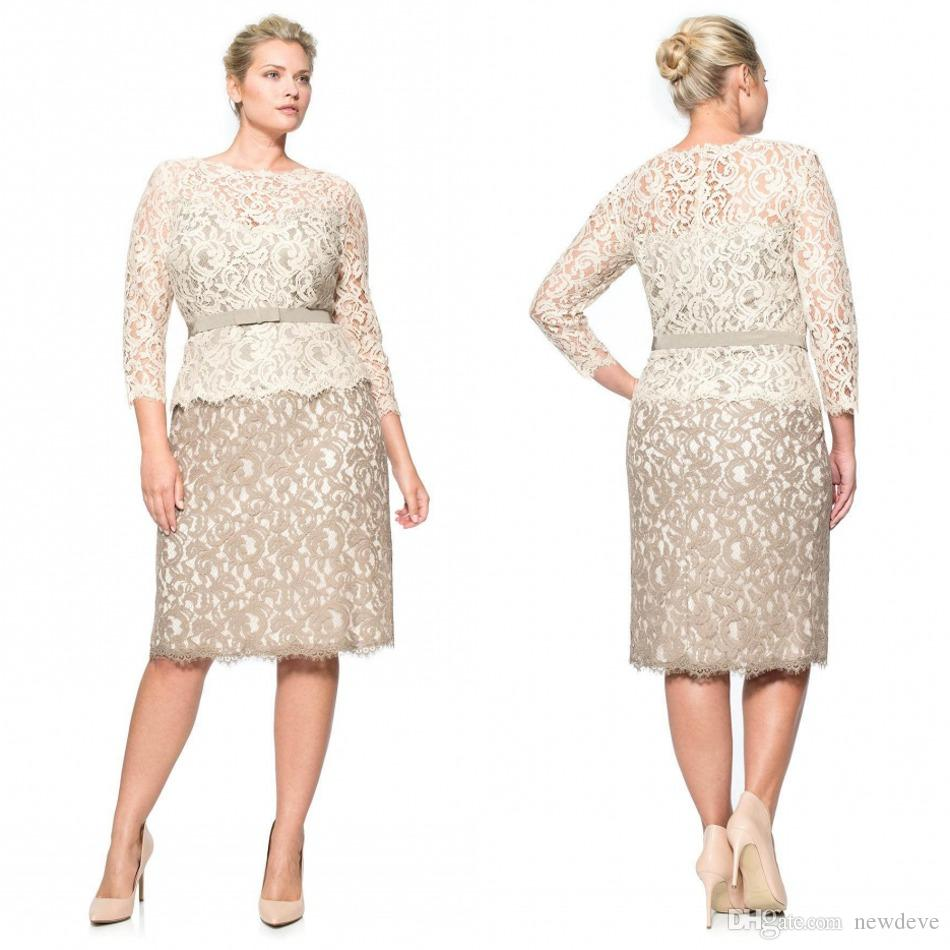 Plus Size Special Occasion Dresses Full Lace Bateau Long Sleeve Evening  Gowns Knee Length Sheath Mother Of The Bride Plus Size Clothing Stores  Online ...